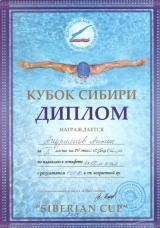 2019_diplom-ksibiri-2-andrianov